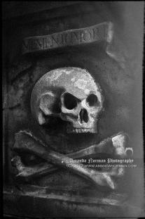 Memento Mori Skull Crossbones