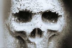 Extreme Skull Sepia
