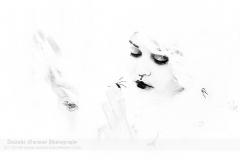 Ghost of Miss Havisham