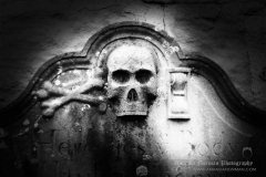 Headstone Mortality Symbols