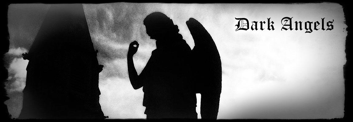 Dark Angels by Amanda Norman
