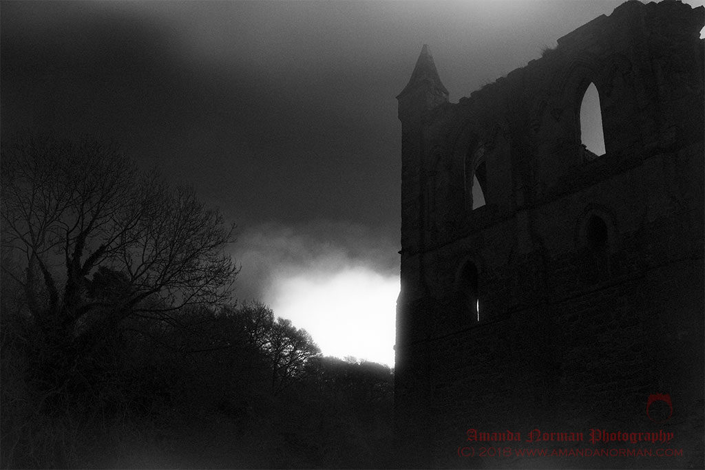 Ghosts of Rievaulx Abbey