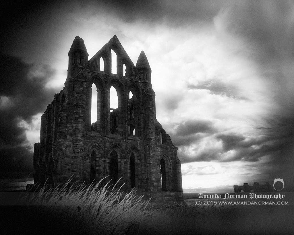 Whitby Abbey print from Amanda Norman