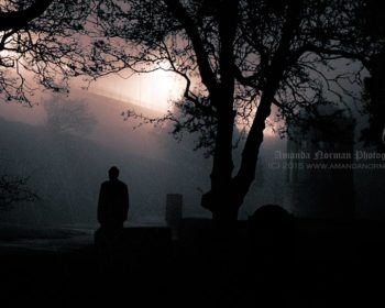 Photograph taken at night in St James Cemetery Liverpool