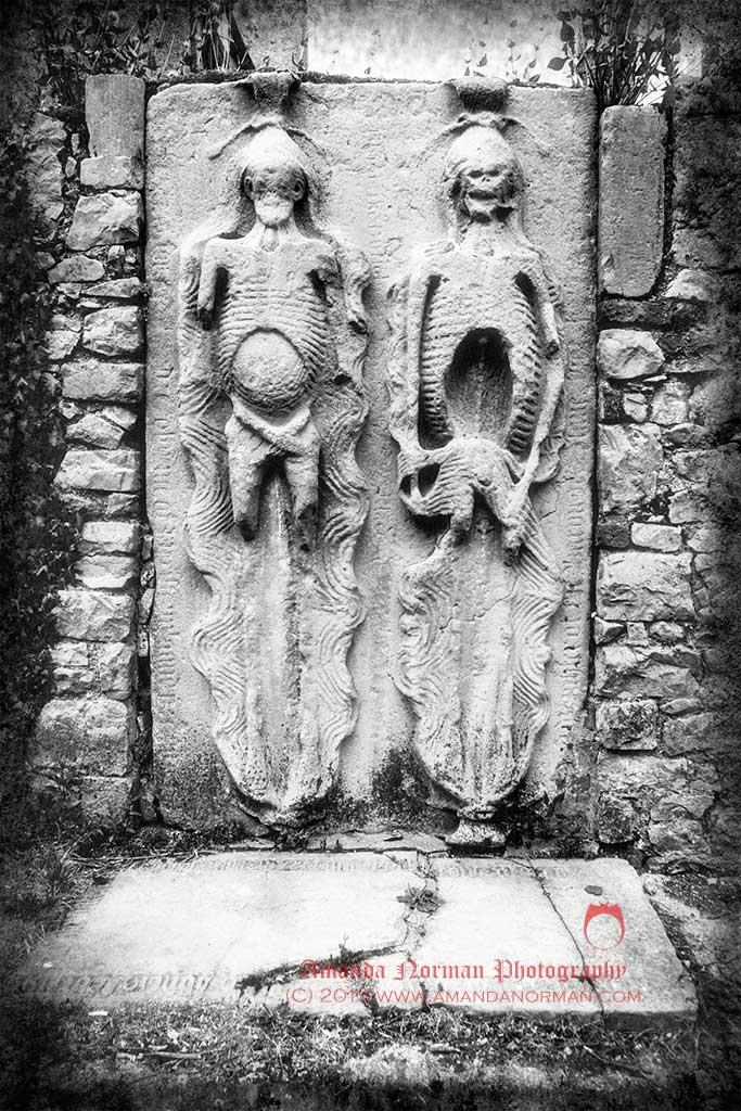 Drogheda Cadavers