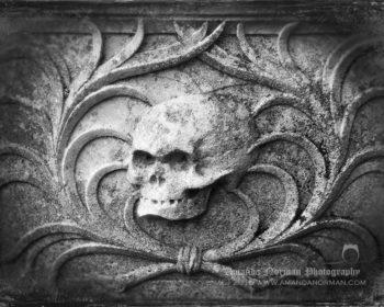 Burwell Skull