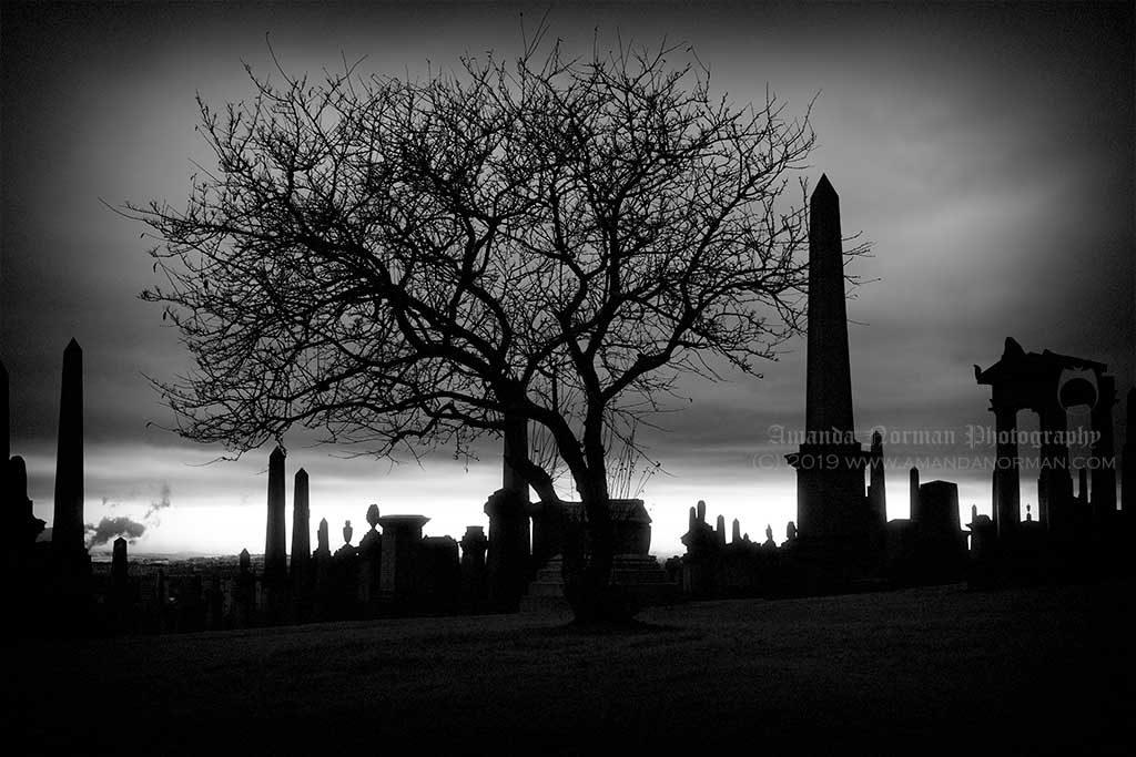 Glasgow Necropolis by Amanda Norman