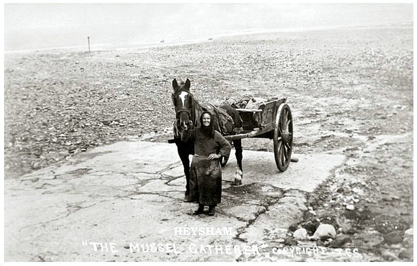 Polly Blacow, a Mussel Gatherer of Heysham