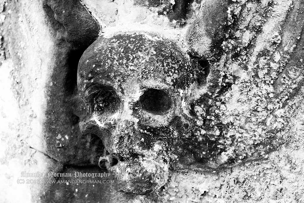 Winged Skull Photograph