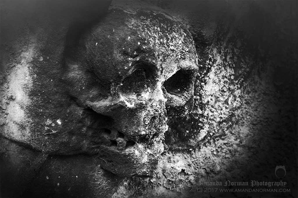 Winged Skull on Headstone
