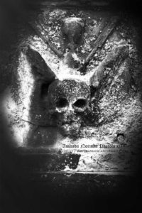 Winged Skull on Headstone